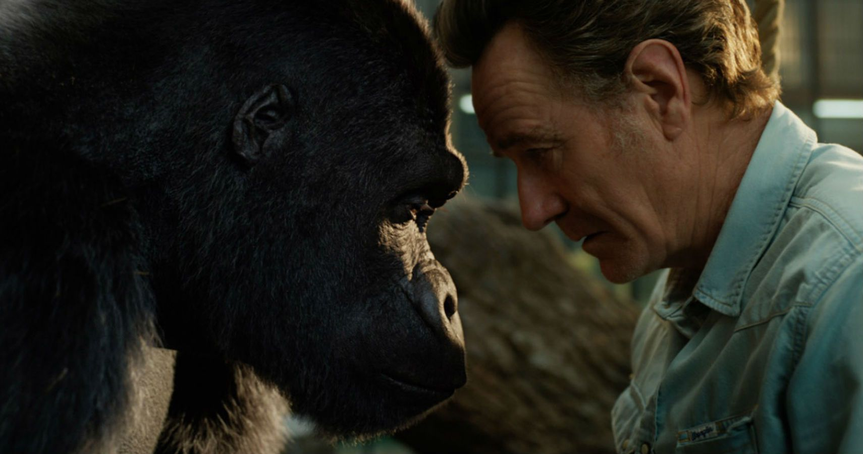Bryan Cranston On The Real-Life Events Behind Disney's 'The One And Only Ivan'